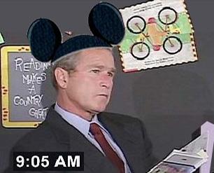Mickeybush