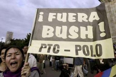 Bush Bogota