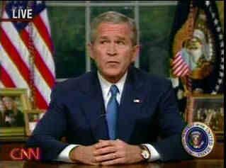 Bush Despistado-2