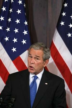 Bush Idiotface