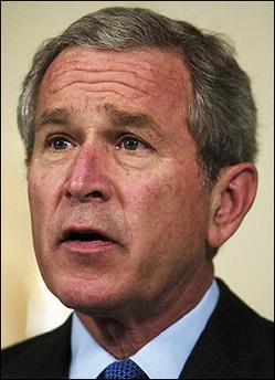 Bush Nsa