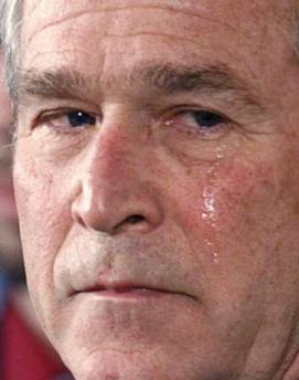 Bush llora