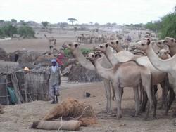 Afmadow, Somalia